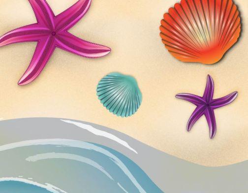 Starfish&Shells-01